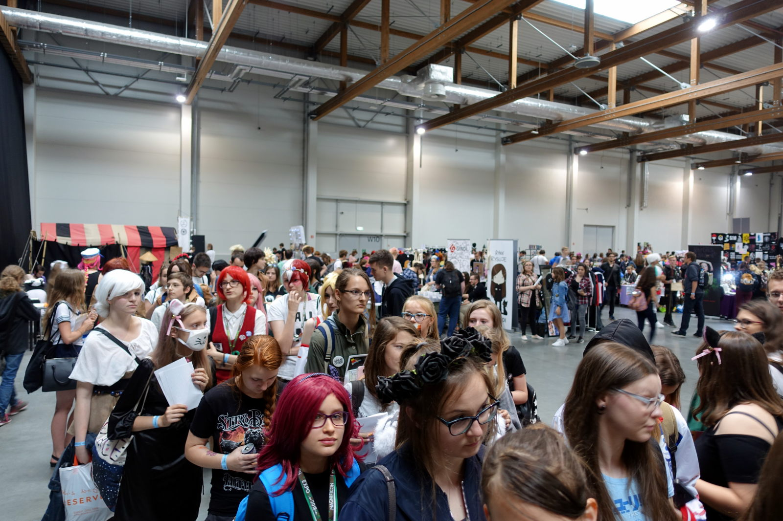 People queueing in a large hall. Behind them there are dealers' booths.