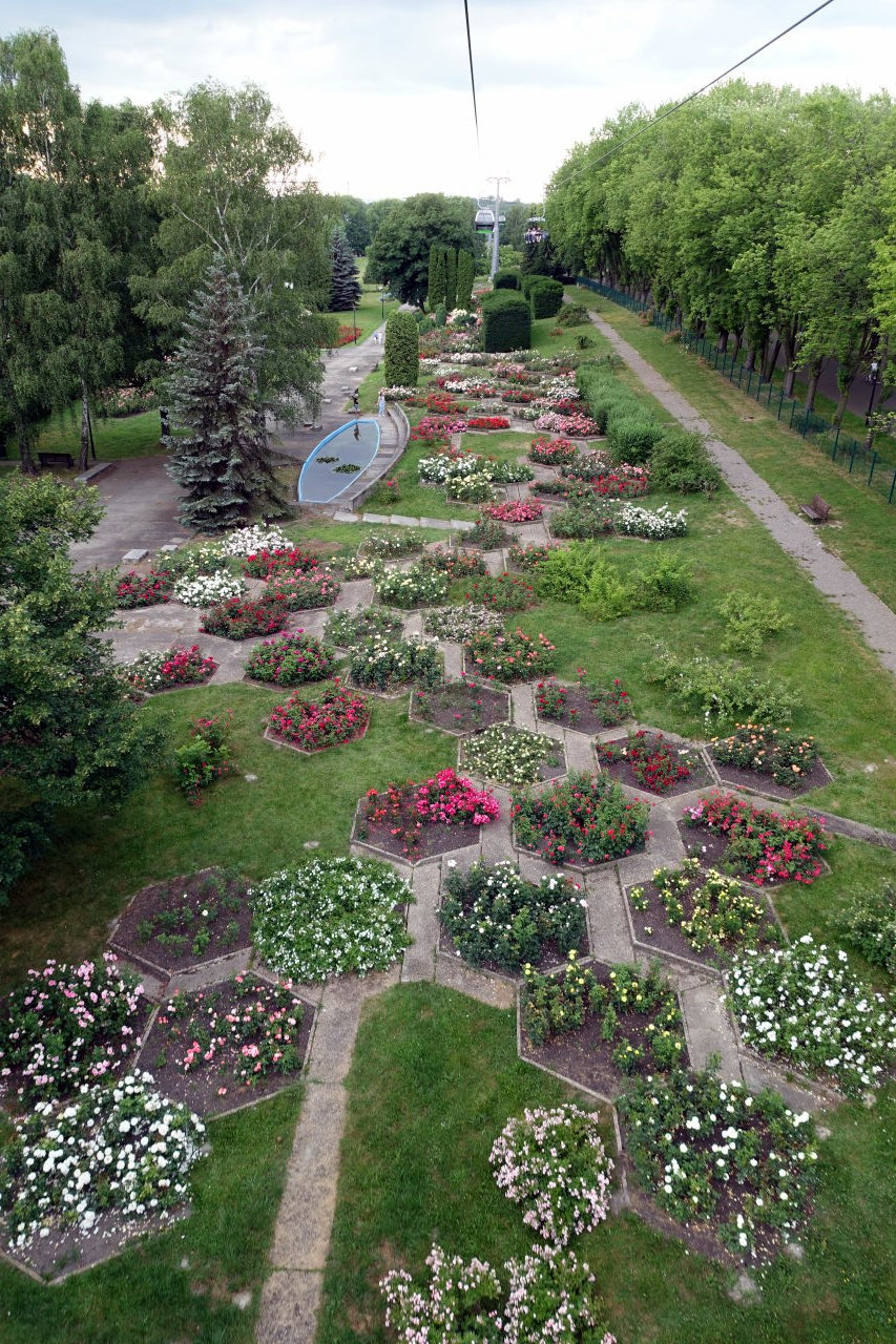 Picture taken from above showing flowers in a park.