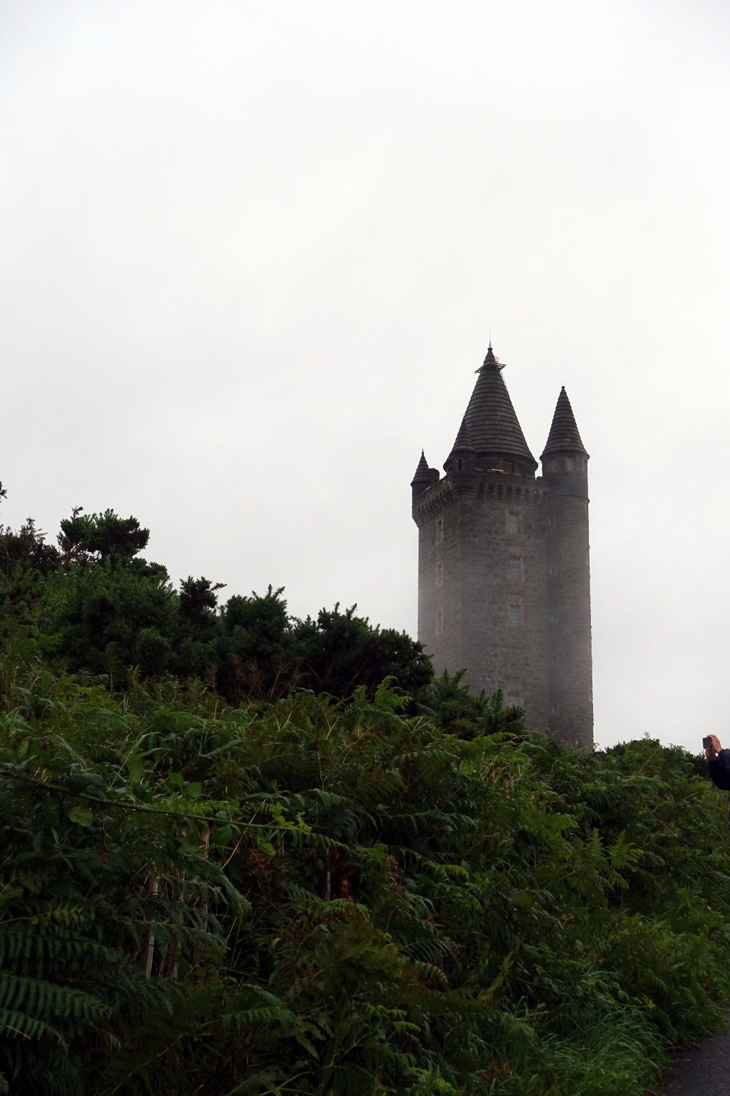 A tower covered in a fog looming above some plants.