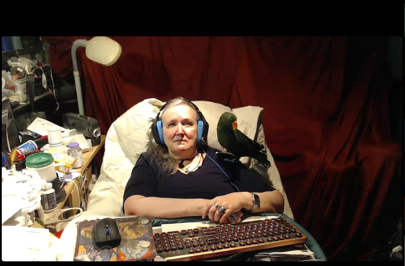 Person with a parrot on her arm is sitting in an armchair. Keyboard and mouse are in front of the person.